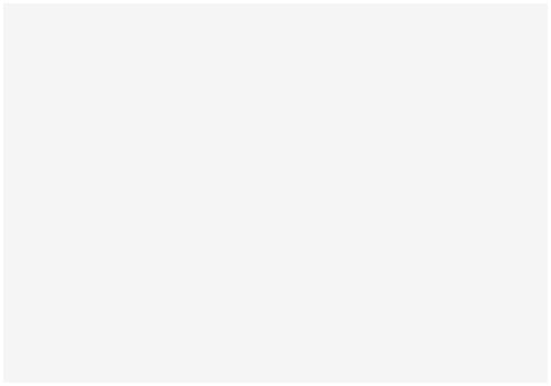 Neiko
